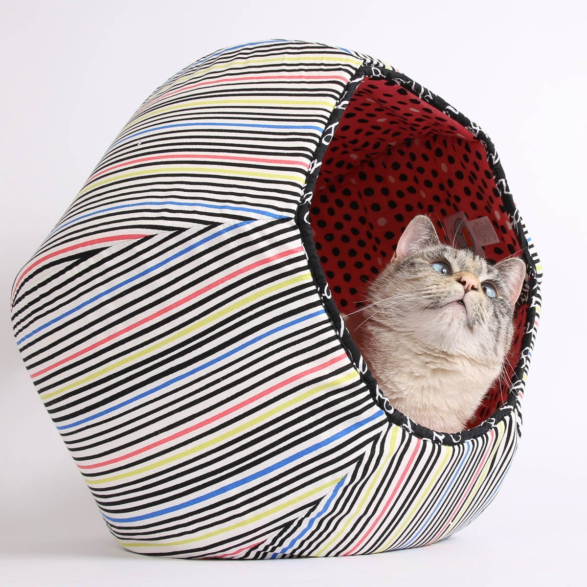 cat ball bed