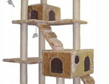 An Affordable Quality Cat Tree For a Multi-Cat Household!