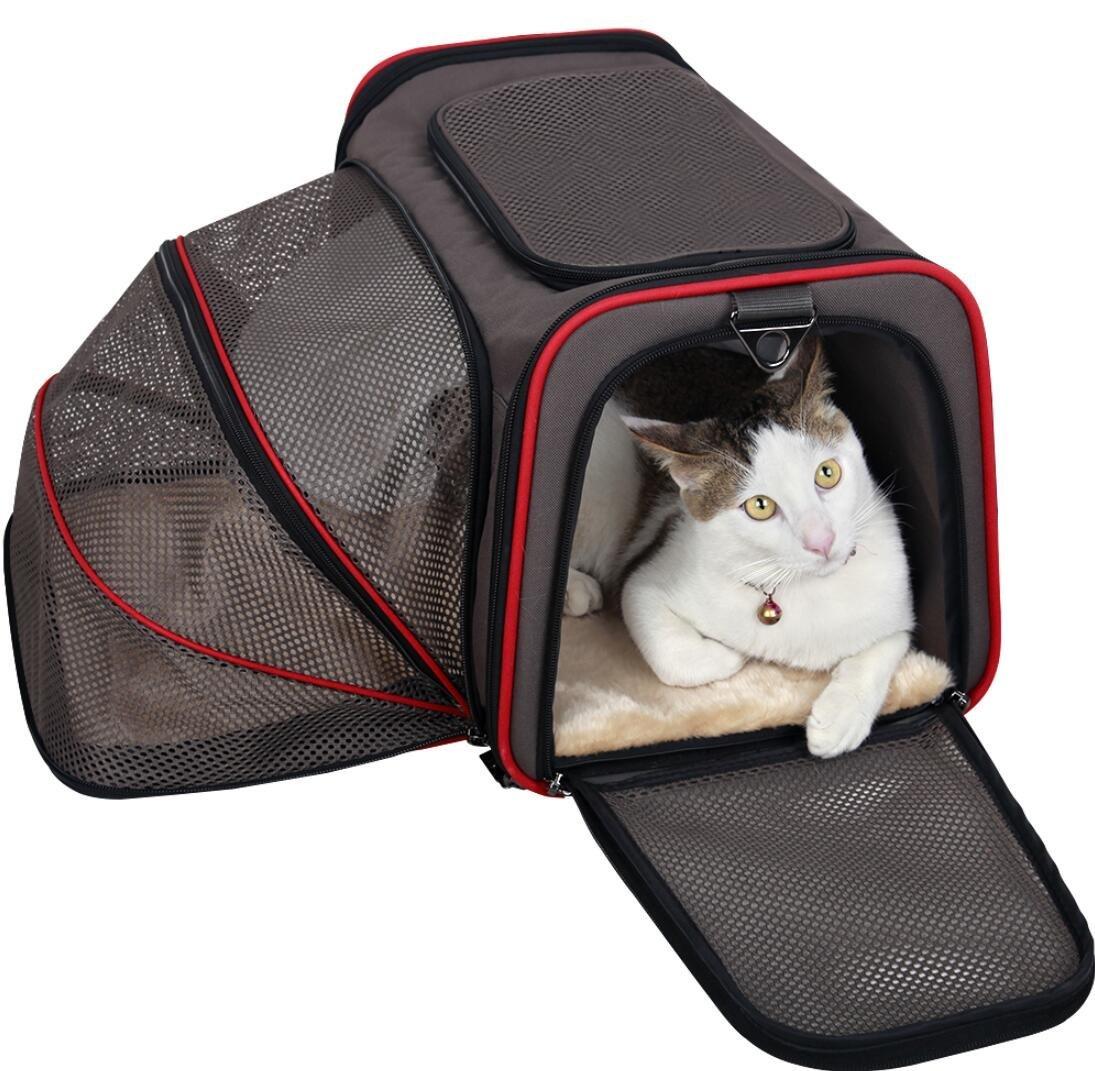 expandable-cat-carrier